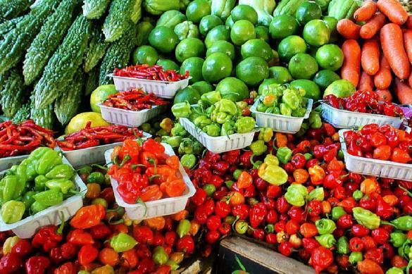 Питание должно быть органическое, а не ГМО-химическое