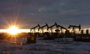 На шельфе Восточной Арктики открыто новое нефтяное месторождение