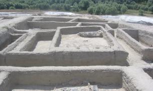 Древние отложения мочи позволили уточнить, когда возникло скотоводство
