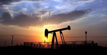 Владислав Гинько: Интересы Роснефти – это интересы всей России
