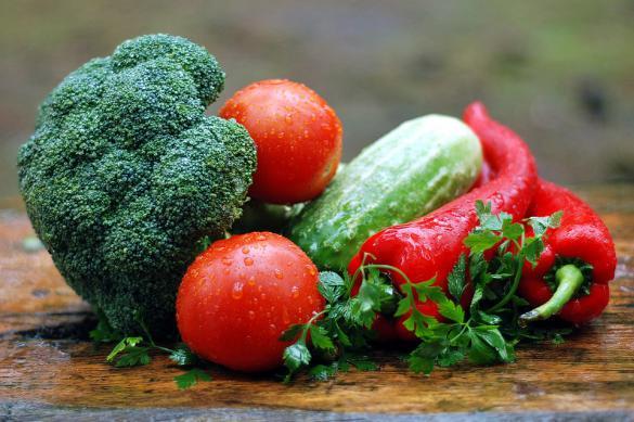 Правильное питание: каким советам верить