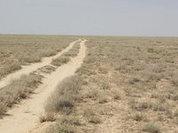 Назарбаев предлагает называть Казахстан Страной великой степи