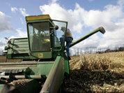 В ДНР перед посевной нужно разминировать 250 га земли