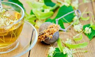 Лист чая поможет от всех болезней