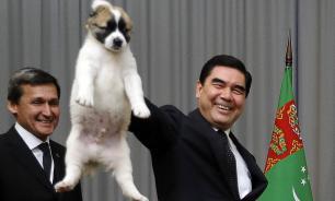 """Президент Туркмении Бердымухамедов написал книгу """"Туркменский алабай"""""""