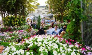 Пять летних дизайнерских садов будут сооружены в Москве