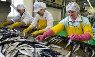 Сахалин продает рыбу электронно