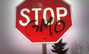 Генетически модифицированные организмы: за и против