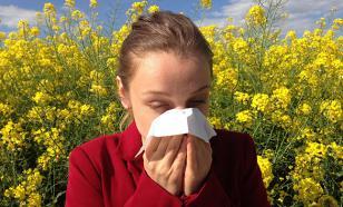 Простые способы спастись от аллергии