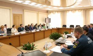 В Нижний Новгород во время ЧМ-2018 приедут более 4000 шведов