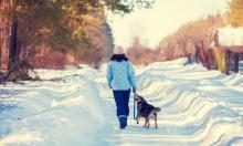 Сколько нужно гулять с собакой?