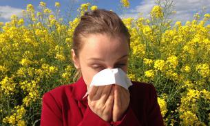Аллергия: когда иммунитету заняться нечем