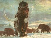 Что согревало кровь мамонтов