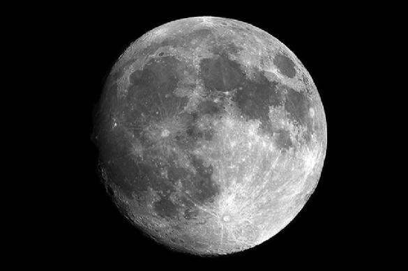 """Китайцы смогли вырастить лунный хлопок на """"Чанъэ-4"""""""