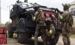 Хоть не расстреляли: спецназ ФСБ уничтожил ящик санкционных яблок