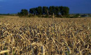 Франция занервничала из-за российского зерна