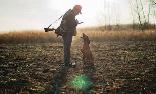 Закон о лове животных. Экологи в шоке
