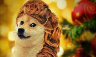 Хвост трубой: Желтая Собака диктует моду на прически