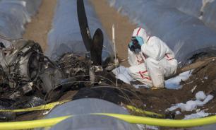 ФБР Германии опубликовало показания диспетчеров и данные радара по крушению самолета S7