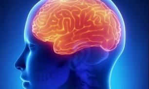 Ученые: работа таксиста и космонавта уменьшает человеческий мозг