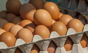 В Ярославской области активно развивают яичное птицеводство