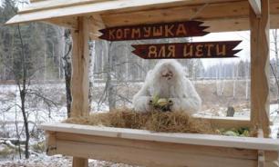 В Челябинской области построили кормушку для снежного человека