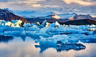 Российские ученые нашли в Арктике оазисы с одуванчиками