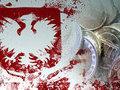 Анатолий Бажан: У Польши нет никакого  суверенитета