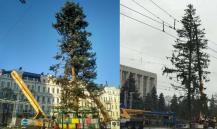 """""""Ужас, позор и скорбь"""": елка в центре Киева привела украинцев в шок. Видео"""