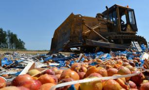 Минсельхоз РФ отверг идею запретить уничтожение санкционных продуктов