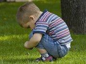 В Новосибирской области сокращается число сирот и детдомов