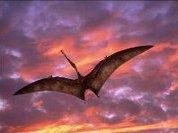 Птерозавры помогли цветам завоевать мир