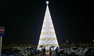 Самая высокая в Европе рождественская ель установлена в Гранаде