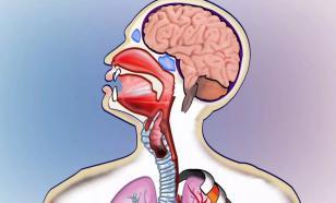 Дифтерия: симптомы, диагностика, лечение