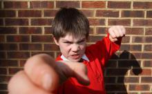Родители устроили самосуд над агрессивным школьником