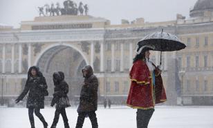 Санкт-Петербург отказался от живых новогодних деревьев, но лучше украсит 49 искусственных елей
