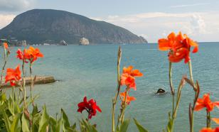 Черное море очистят водорослями?