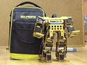Роботы - просто полюбить, сложно выжить