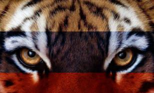 Кудрин сравнил правительство с тигром, который вот-вот прыгнет