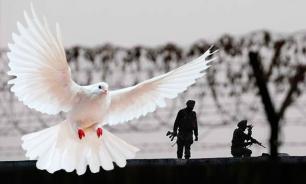 Задержан голубь с пакистанским письмом для премьера Индии