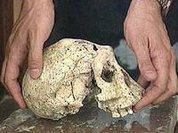 Грузинский череп перепишет историю человечества?