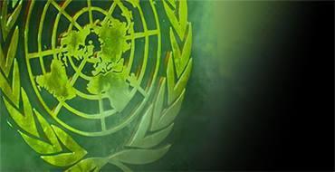 Ольга Абрамова: Надо менять структуру ООН, чтобы нивелировать значимость Америки