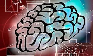 """Ученые нашли способ """"загрузки"""" знаний в мозг?"""