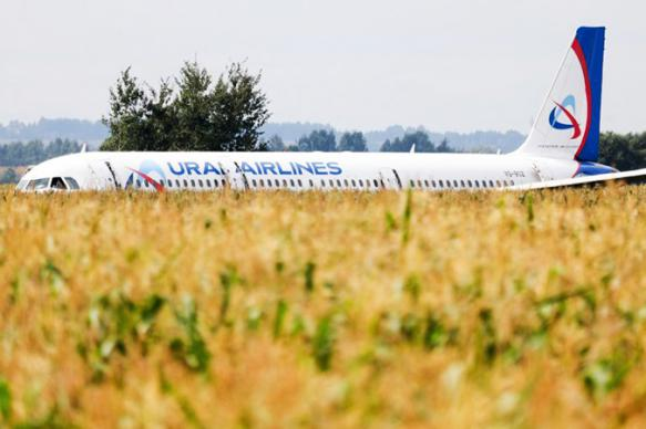 Диспетчер предупреждал экипаж А321 о птицах на аэродроме