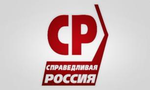 """СР против """"дачных"""" участков на выборах губернатора Петербурга"""