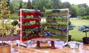 Пять идей, как сделать огород красивым