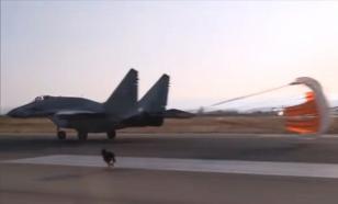 """Хмеймим: У МиГ-29 появился сопровождающий - свой """"аэродромный пёс"""""""
