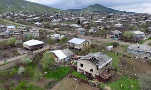 Кавказ захлестнула эпидемия, уничтожающая домашний скот