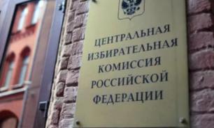 ЦИК получил коллективные жалобы на работу избиркомов в Петербурге