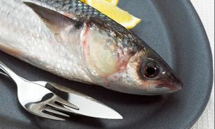 """Виктор Чеботаев: """"В рыбной отрасли мы последний оплот государства"""""""